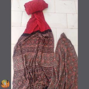 Hand Block Printed  Cotton  Saree with Blouse