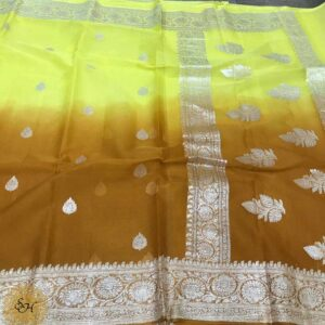 Banaras Khaddi Georgette Sarees (3)