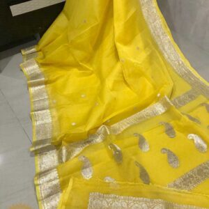 Banaras Khaddi Georgette Sarees (10)